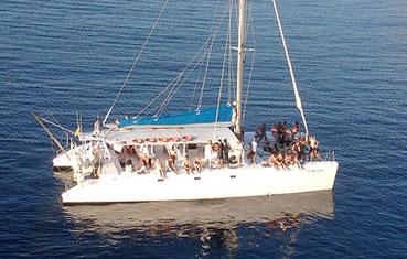 Catamaran charter in Ibiza 80 people