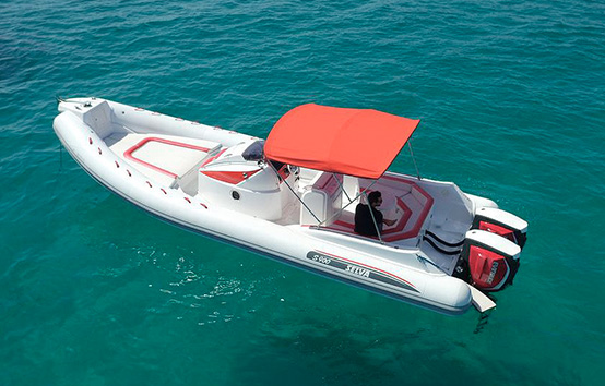 Ibiza zodiac charter selva 900s